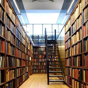 Библиотеки Новозыбкова