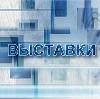Выставки в Новозыбкове