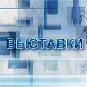 Выставки Новозыбкова